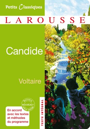 candide voltaire summary